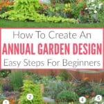 How To Create An Annual Garden Design: Easy Steps For Beginners